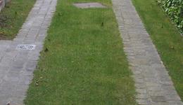 Tuinen CALLENS CARL - Bavikhove - Verhardingen