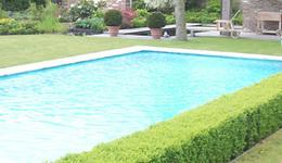 Tuinen CALLENS CARL - Bavikhove - Vijvers & Zwembaden